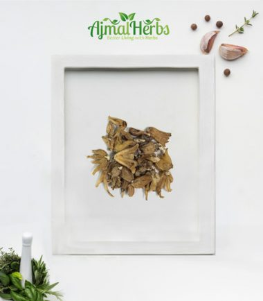 Dactylorhiza | Salab Panja | ثعلب پنجہ