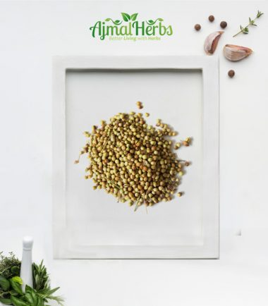 Dhaniya( coriander)