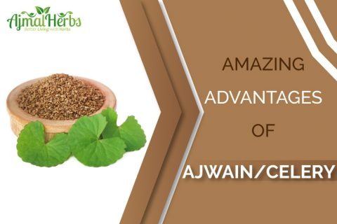 ajwain-celery